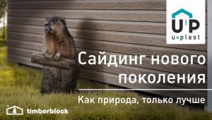 Тимберблок Кедр